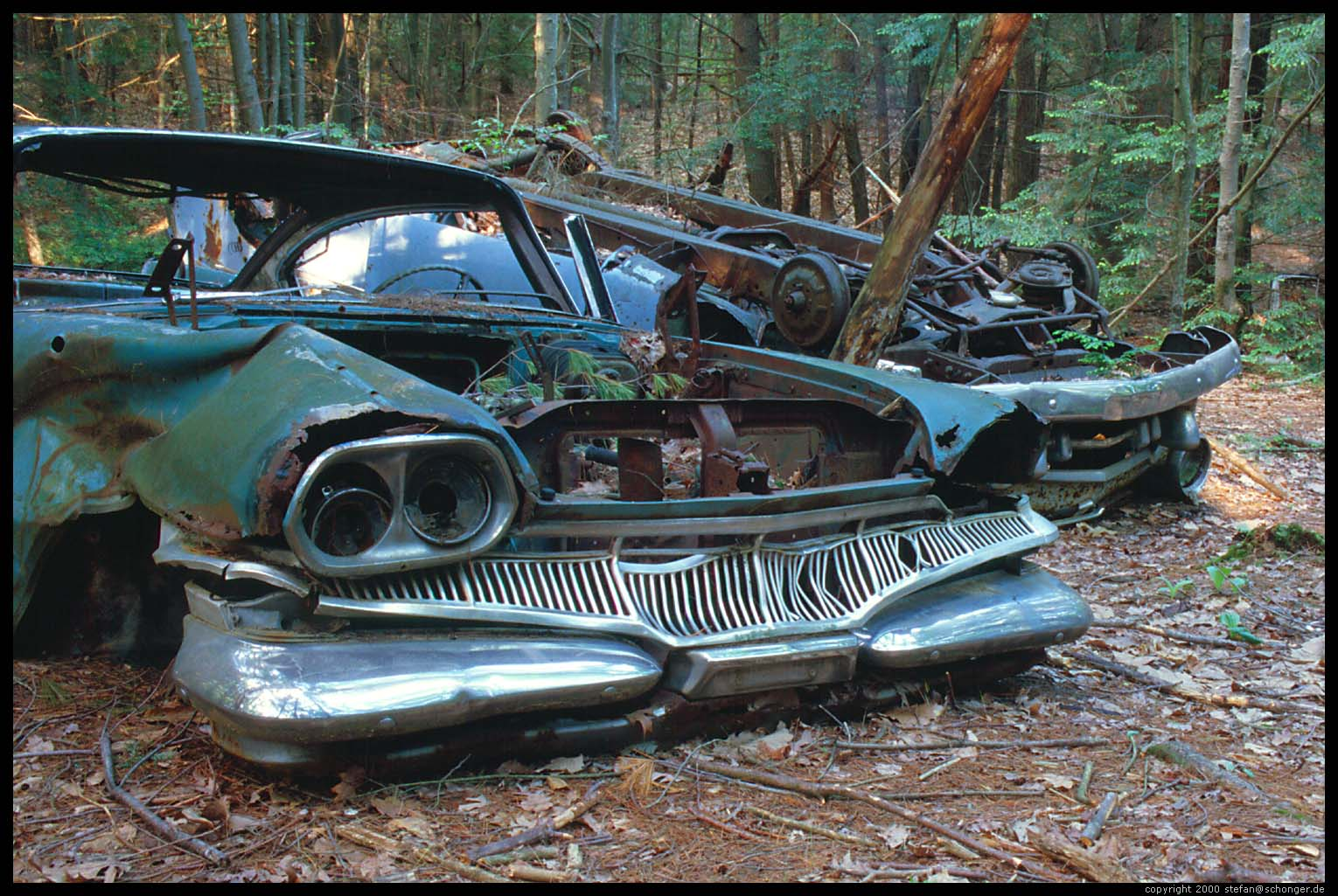 0385 - Junk Cars in Forest, Amherst, MA, May 2000
